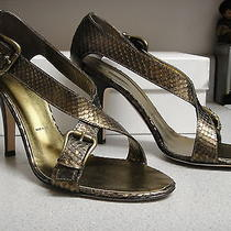 Vera Wang Bronze Snakeskin Buckle Strappy Sandal Heels Shoes 40 9.5 560 Photo