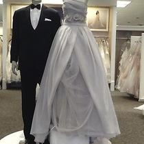 Vera Wang Organza Stapless Wedding Dress Photo