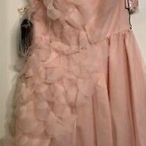 Vera Wang Petal Dress Nwt Blush Photo