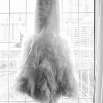 Vera Wang Wedding Dress Photo