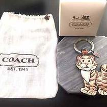 Very Rare Year of the Tiger Coach Keychain Photo