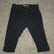 Vguc Nicole Miller Toddler Girl Polka Dot Capri Leggings - 3t Photo