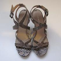 Via Spiga Epic Natural Snake Skin Leather Strappy Open Toe Wedge Sandals 7.5 M Photo