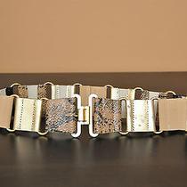 Via Spiga Leather Belt Photo