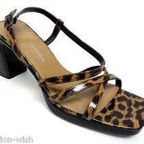 Via Spiga (Leopardbrown7pumpsshoesitaly) Photo