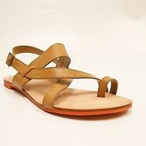 Via Spiga Pansey Cognac Leather  Toe Ring Slingback Strappy Flat Sandals 8.5 M Photo