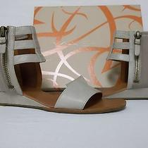 Via Spiga Size 8.5 M Patrice Taupe Leather Gladiator Sandals New Womens Shoes Photo