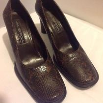 Via Spiga Women's Brown Snake Print Leather Pumps Size 8 Med Shoes Photo