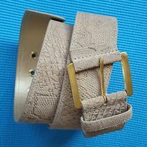 Viaspiga Wide Belt Metal Gold Tone Buckle Contoured Leather Animal Beige Sz L 14 Photo