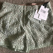 Victoria Beckham for Target Lace Shorts Girls Size Xl Green Kids Nwt Photo