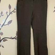 Victoria's Secret Christie Fit 6 Cotton Stretch Pants Chocolate Bootcut Flare Photo