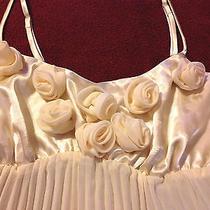 Victoria's Secret Pleated Chiffon & Rosette Satin Bodice Chemise Nightie Med Photo