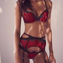 Victoria's Secret Sexy Nwt New Black Red Lace Cage Garter Belt Sz Xs/s Photo