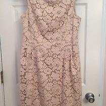 Vince Camuto Blush Lace Dress Size 12 Photo