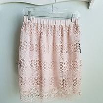 Vince Camuto Blush Pink Lace Skirt- Sz Xs Nwt Photo