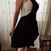 Vince Camuto Dress Fit and Flare Photo