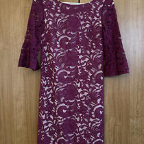 Vince Camuto Lace Ruffle Sleeves Dress-Sz 2 Photo