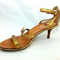 Vince Camuto Vero Cuoio Womens Gold Leather Snakeskin Strap Sandal Sz 9 M (8198) Photo