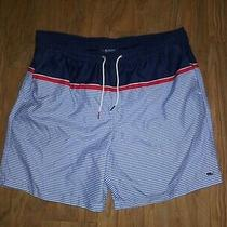 Vineyard Vines Men's Size Large Swim Trunks Shorts Brief Liner Blue Striped Photo