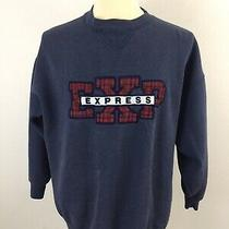 Vintage 80s 90s Express Men's Large Sweatshirt Fleece Plaid Logo Spellout  Photo
