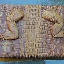 Vintage Alligator Clutch Made Well Rare Very Unique  9''x 6''signed on  Bottom  Photo
