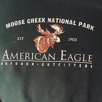 Vintageamerican Eagle Oufittersmen's Sweatshirtxl Photo