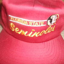 Vintage Florida State Seminoles Hat Cap Snapback Fsu Classic American Needle Wow Photo