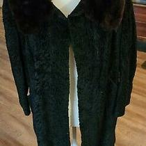 Vintage Fur Coat Jacket Black Persian Curly Lamb W Brown Mink Collar S/m Photo