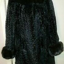 Vintage Glam Persian Lamb and Blackbrown Mink Fur Coat Size. Beautiful  Photo