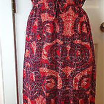 Vintage h&m Euro 38 Us 8 M 100% Viscose Poly Lined Red Plum Wild Maxi Dress Boho Photo