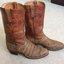 Vintage Lucchese Classics 10.5 D Rare Exotic Hippo Western Cowboy Boots Handmade Photo