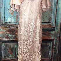 Vintage Patra Lace Rose Blush Long Dress Victorian Steampunk Reenactment Plus 16 Photo