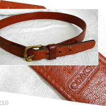 Vintage Retro Coach Leather Belt Womens 28 Glove Tanned Cowhide Warm Brown  Photo