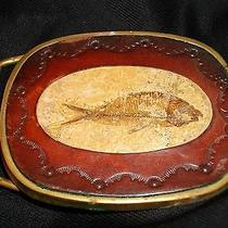 Vintage Solid Brass Belt Buckle W/ Stone Fish Fossil & Stamped Leather Trim Photo