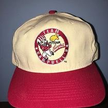 Vintage Team Campbell's Snapback Hat Photo