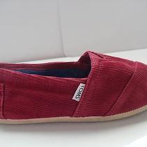 Violet Toms Size 7.5  Photo