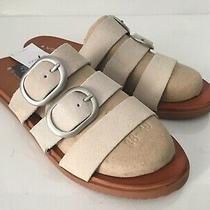 Volcom Buckle Up Buttercup Slide-on Real Suede Sandals Bone/tan Women's Sz 8 45 Photo