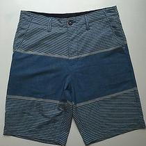 Volcom Surf & Turf Hybrid Shorts Photo