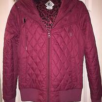 Volcom Winter Jacket  Photo