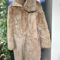 Vtg Helmut Lang Sz 38 Us S Beige Shearling Teddy Coat Photo