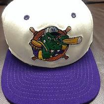 Vtg Snapback Hat Cap Rare B830 Minor League Milb Gators Crocs New Era Nwot Photo