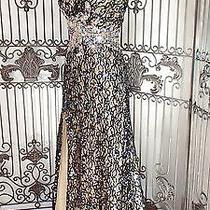 W15 Blush 9801 Sz 2 Midnight Nude   Formal Pageant  Prom Gown Dress Photo