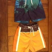 Water Shorts Photo