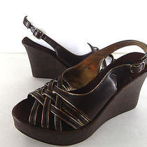 Wedge Steve Madden Rule Size 6.5 M Brown Photo