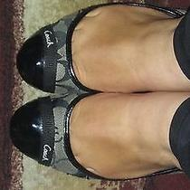 Well Worn Women Coach Black and Gray  Flats  Photo