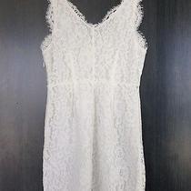 White Joie Lace Dress Photo