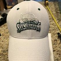 Whl Everett Silvertips Hockey Cap Reebok Adult Flexfit Size L/xl Hat Photo