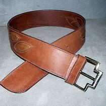 Wide Leather Brown Belt With Raised Croc Motif Accents Gorgeous Sz Small Photo