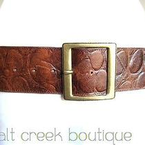 Wide Vintage Linea Pelle Italy Brown Crocodile Leather Embossed Women Hip Belt M Photo