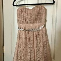 Windsor Blush Pink Lace Strapless Formal Dress Size 5 Nwt Photo